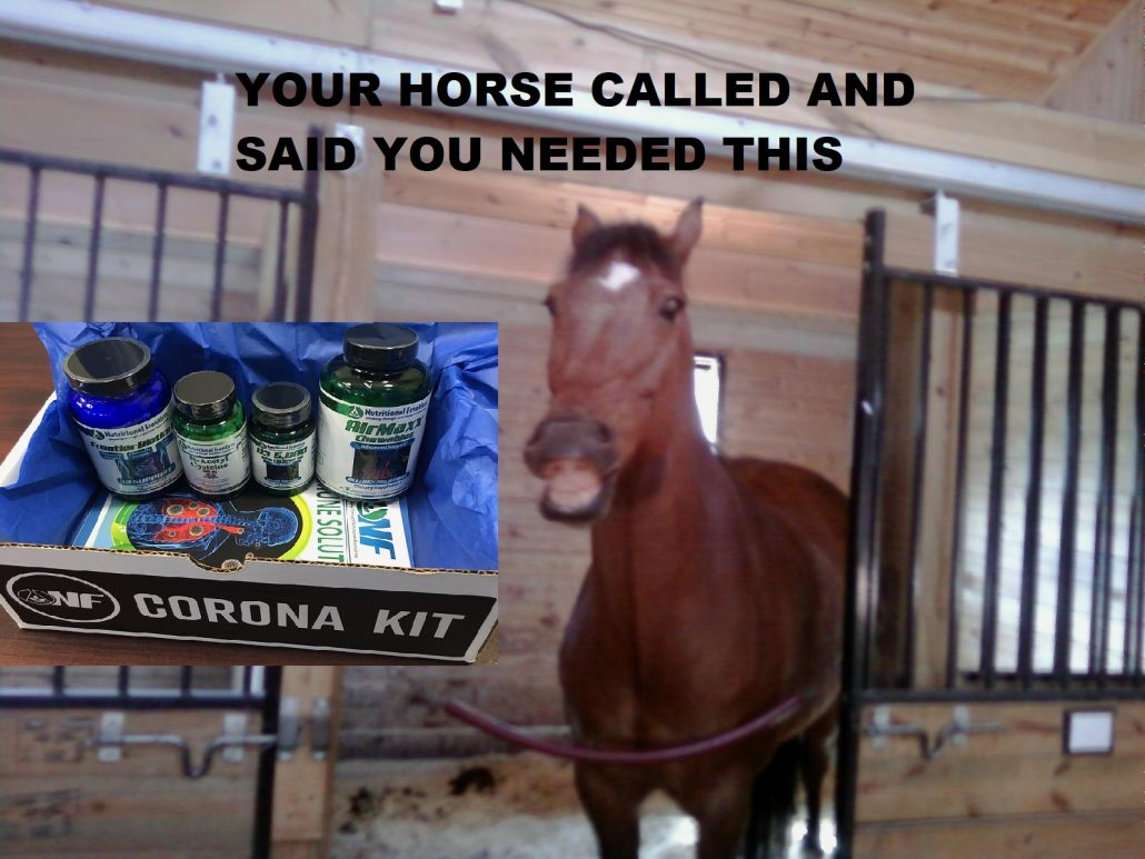 corona kit for the horse owners and all their human friends.